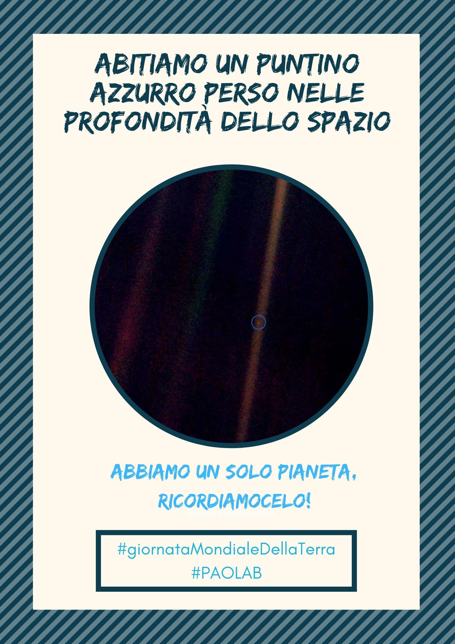 Giallo e Bianco con Foto Protezione Ambientale Evento Poster